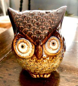 Dollar Tree Owl Makeover